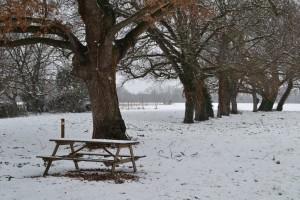 SAUBENS hiver2015