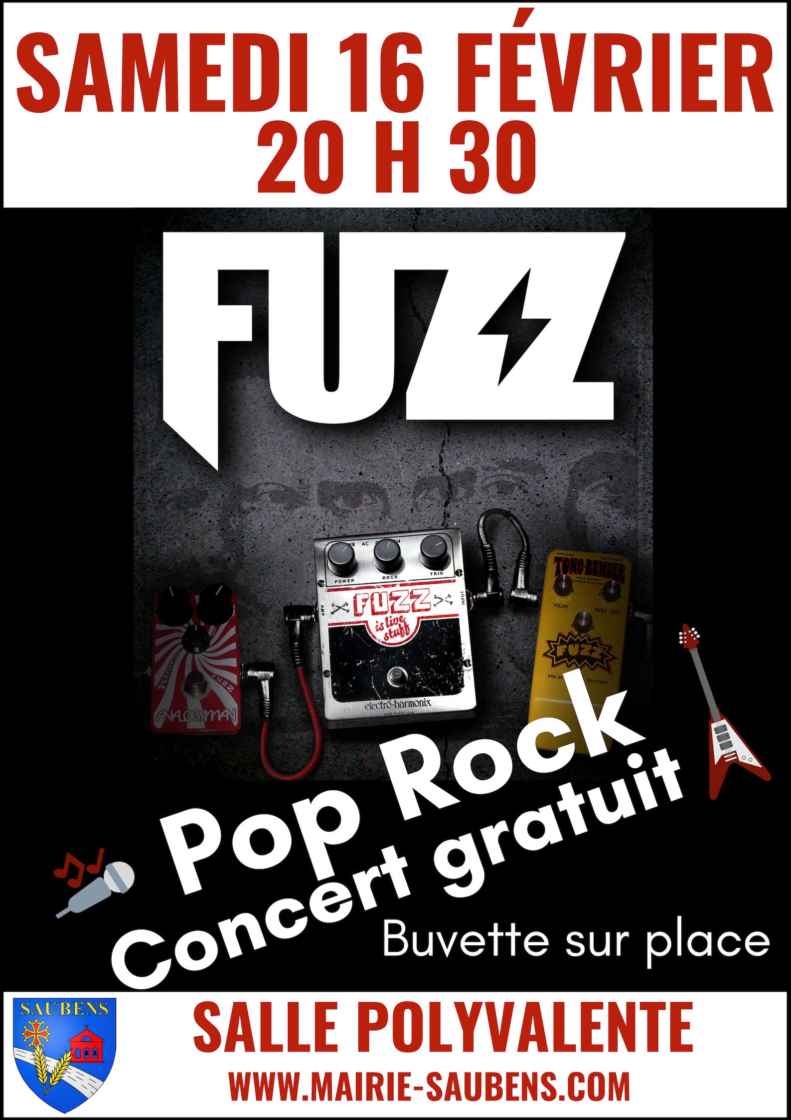 CONCERT POP ROCK DU GROUPE FUZZ