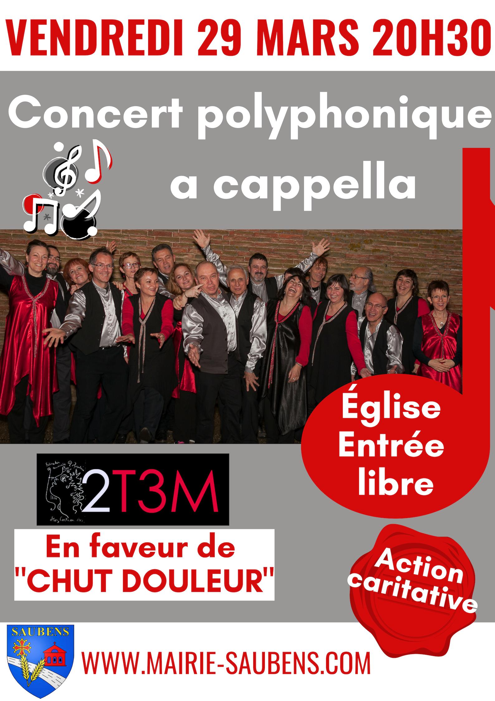 """Concert polyphonique a cappella de 2T3M en faveur de """"CHUT DOULEUR"""""""